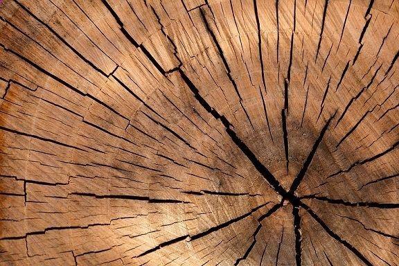 La psicología y significado del color marrón pueden transmitir varios significados:antipatía, pereza, necedad, comúny lo anticuado; es el color de los pobres.El color café o marrón es uno de los colores que más aversión genera en las personas, según las encuestas, y ocupa la última posición...