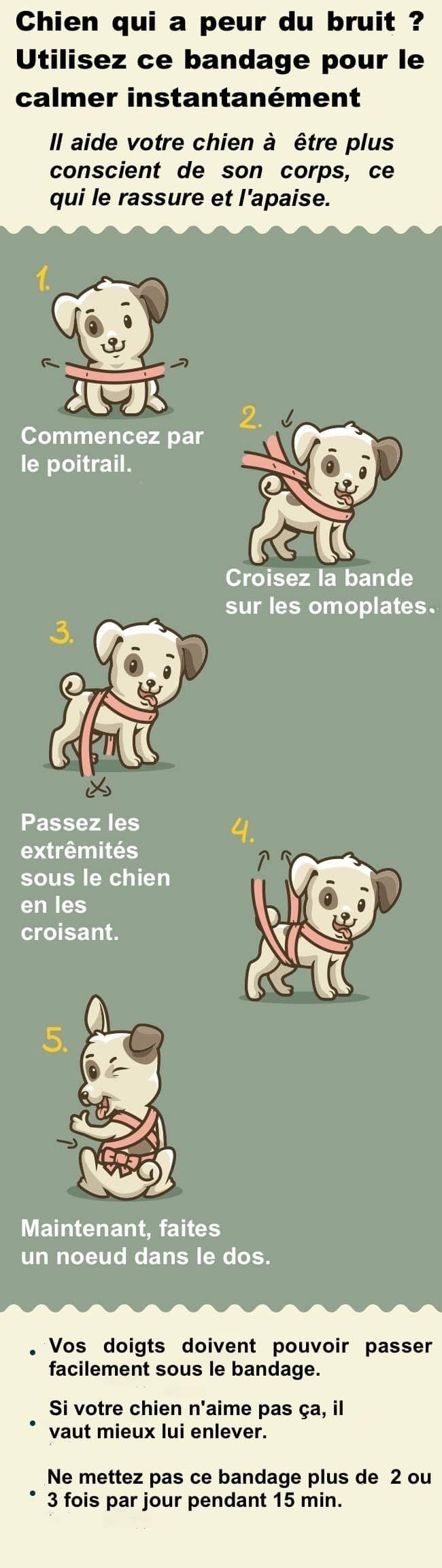Il existe une astuce testée et approuvée pour rassurer rapidement les chiens qui ont peur des bruits retentissants. Pour cela, il suffit de l'envelopper dans un bandage. Grâce à la légère pression effectuée par le tissu, votre chien va se sentir en sécurité.  Découvrez l'astuce ici : http://www.comment-economiser.fr/chien-qui-a-peur-du-bruit-voici-astuce-pour-le-rassurer.html