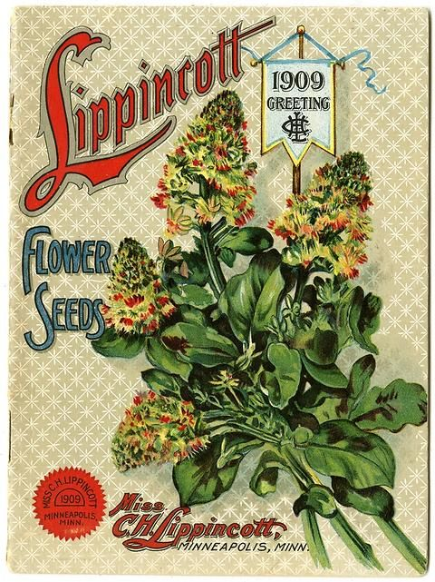 "The 1909 Lippincott catalog was the first year the catalog departed from its previous 5 inch by 7 inch format.  Carrie Lippincott, the self-proclaimed ""pioneer seedswoman"" and ""first woman in the flower seed industry"" established her mail-order flower seed business in Minneapolis in 1891."
