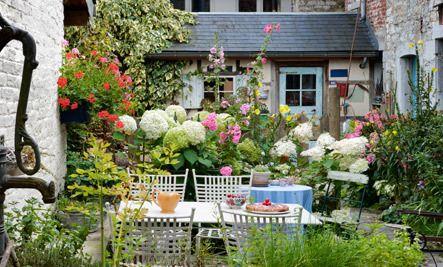 5 Fragrant Plants for Garden Parties