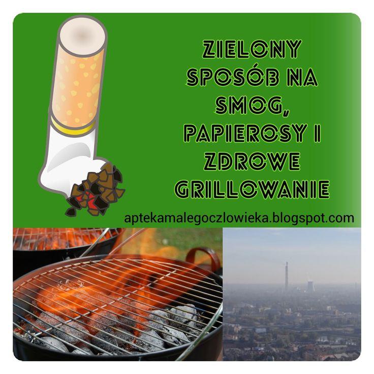 #aptekamalegoczlowieka # grill #chlorophyll Czy zielone warzywa mogą chronić przed rakiem?