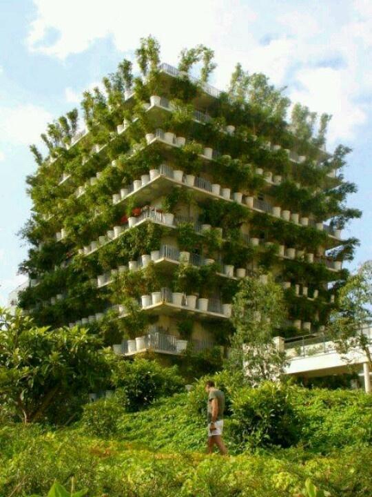 Eco-Friendly..