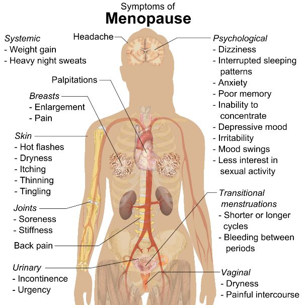 How to Deal with Pre-menopause without Medicines - https://topnaturalremedies.net/natural-treatment/deal-pre-menopause-without-medicines/