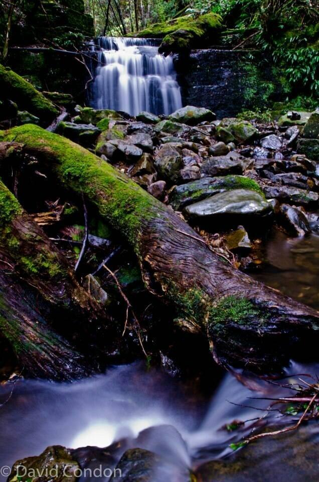 Strickland Falls  Mt Wellington Hobart Tasmania Australia