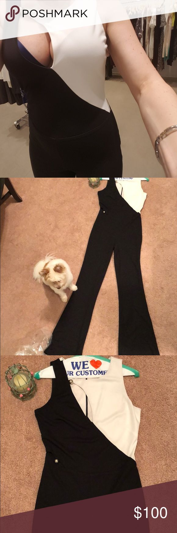 Sheri Bodell One Piece Jumpsuit - Black & White Beautiful!! Worn once!! Jumpsuit - I wore it to a Broadway show - what a show stopper!! Dry cleaned and in perfect condition!! Perfect for a night out - broadway show and dinner - sexy!! Rock it!! Dog is not included!!! Sheri Bodell Other