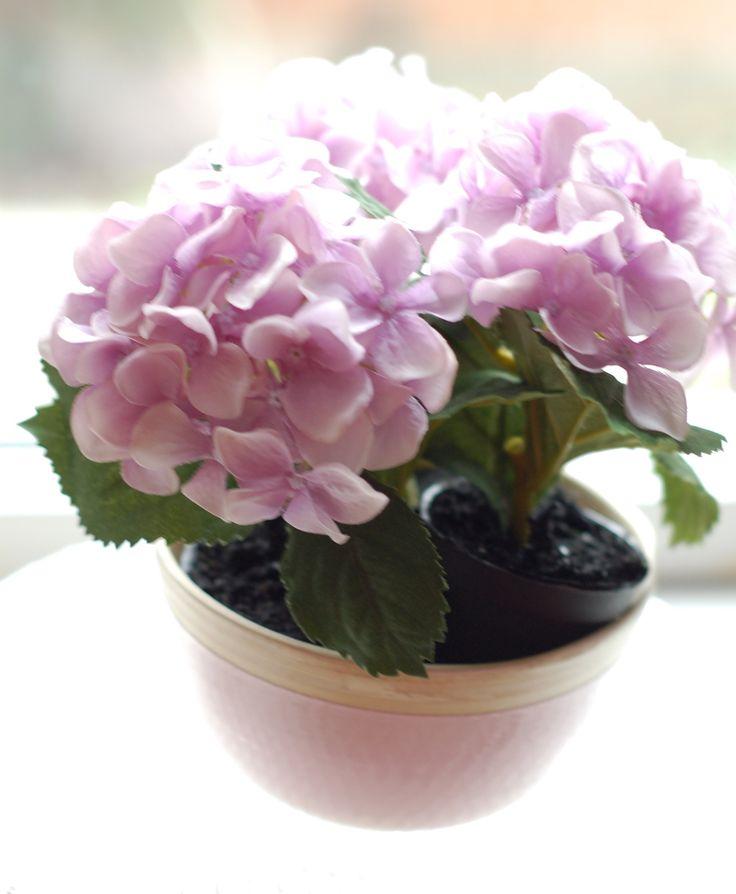 lavender pink mini hydrangea in pastel pink wooden bowl
