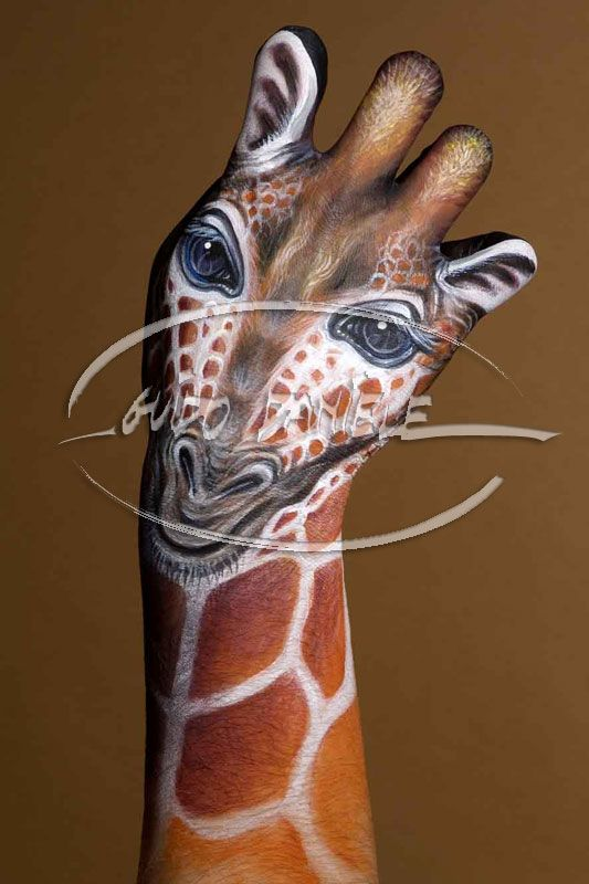 This is a hand  check out this site it s amazing. 17 Best images about Body Painting on Pinterest   Africa