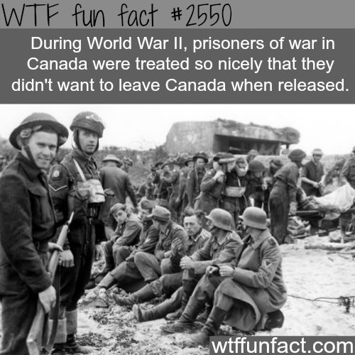 "I guess the ""niceness"" stereotype isn't such a stereotype!   World War 2 Canada's prisoners"