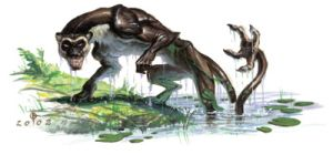 El ahuízotl Era un ser mitologico de la cultura azteca, estaba al servicio de los dioses del agua, su cuerpo en su mayoría era el de un perro, pero con manos y pies de mono, cubierto de un pelaje gris y este extraño ser se tornaba aun mas escalofriante al mostrar su cola que lejos de ser inofensiva era un arma literalmente mortal, ya que disponia de una mano al final de esta con la cual ahogaba a todo aquel que se acercaba a los estanques donde habitaba.