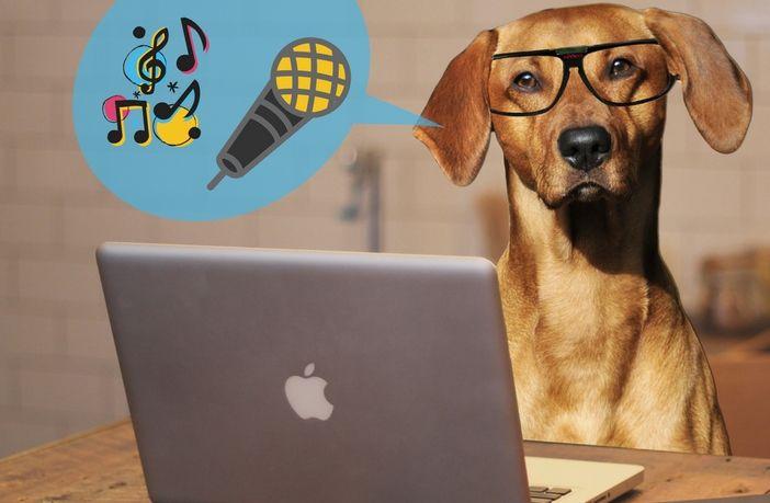 How To Setup A Karaoke System With A Laptop | Karaoke Fun