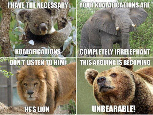 Funny animal jokes - photo#8