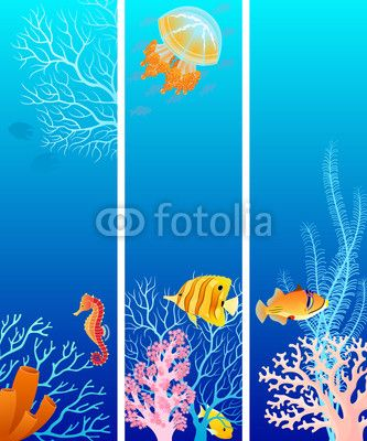 Wallpaper Vertical sea life banner
