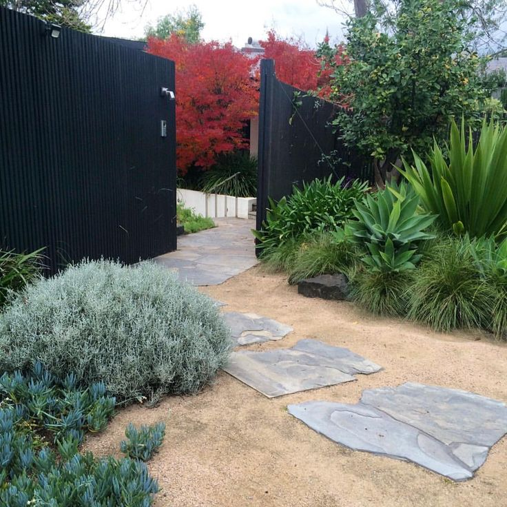 """437 Likes, 7 Comments - GROUNDED GARDENS (@groundedgardens) on Instagram: """"Number 2 - Our Modern Australian Garden #melbournegarden #melbournegardendesigner #gardendesign…"""""""
