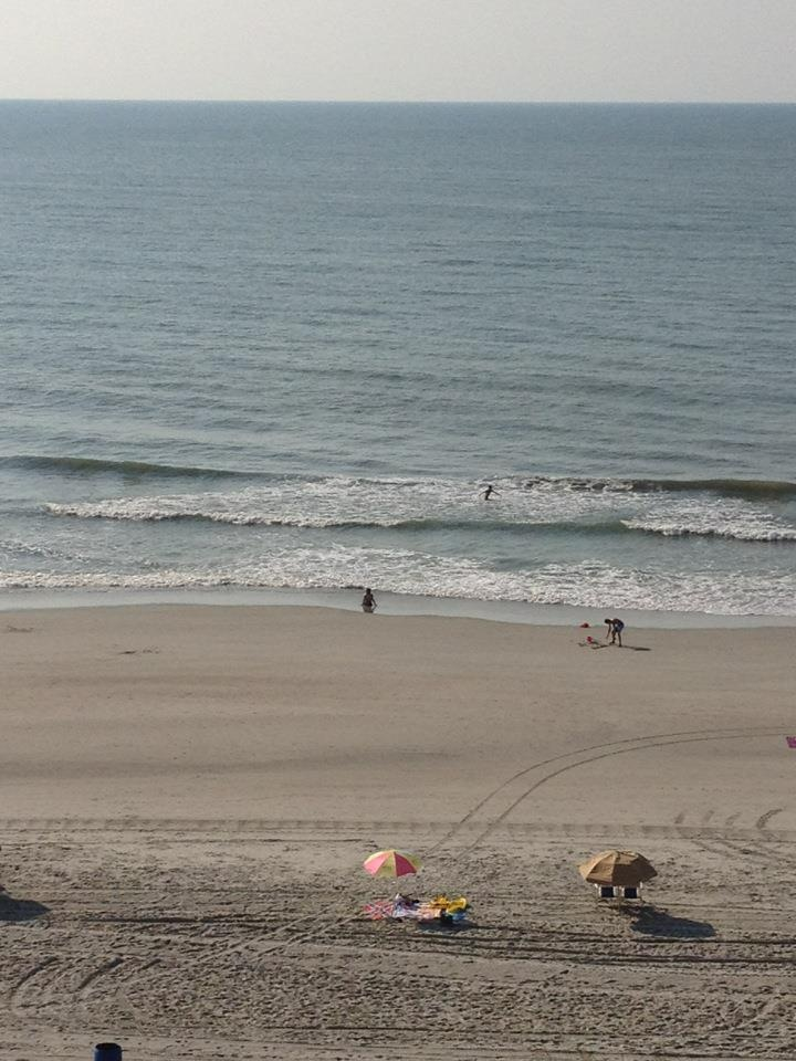 138 Best MYRTLE BEACH Images On Pinterest