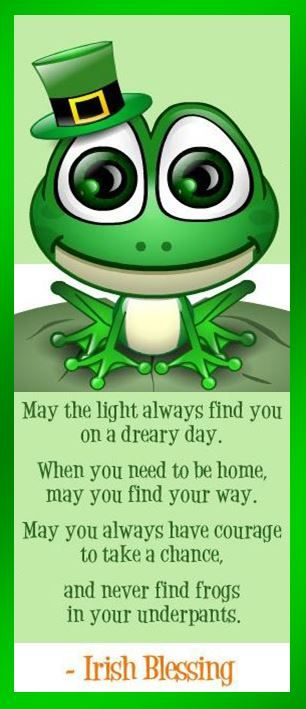 An Irish Blessing . . . May the light always find you on a dreary day. When you need to be home, may you find the way. May you always have courage to take a chance, And never find frogs in your underpants. #funny #stpats