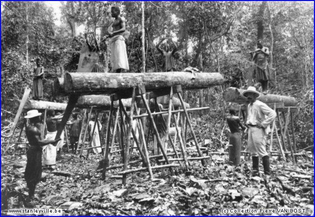 """Chantier forestier près de Stanleyville. Couples de scieurs au travail, en 1904. Extrait de l'ouvrage """"Le rail au Congo Belge"""", tome 1."""
