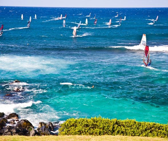 On the north shore of Maui, Hookipa Beach attracts honeymooners and adventure-seekers alike.