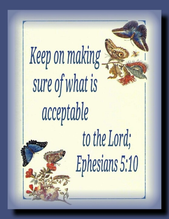 """Ephesians 5:10 - Jesus did not say we could all """"do our own thing"""" and be found """"righteous"""" by his Father. Note what he said in his famous Sermon on the Mount...Matthew 6:7,8;Matthew 7:13,14; 24-29"""