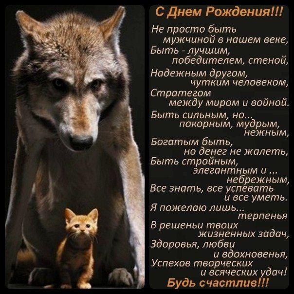 Гифка с днем рождения для мужчины с волками, вождения