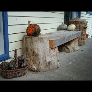 Bench using tree stumps this would be great to have. Best 25  Tree stumps ideas on Pinterest   Wood stumps  Natural diy
