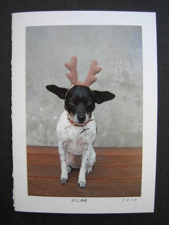 Wilma holiday card, $5