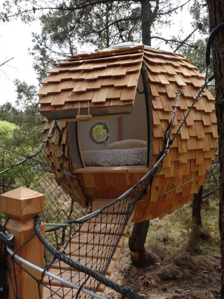 insolite une bulle pour dormir dans les arbres small pinterest pour dormir les arbres. Black Bedroom Furniture Sets. Home Design Ideas