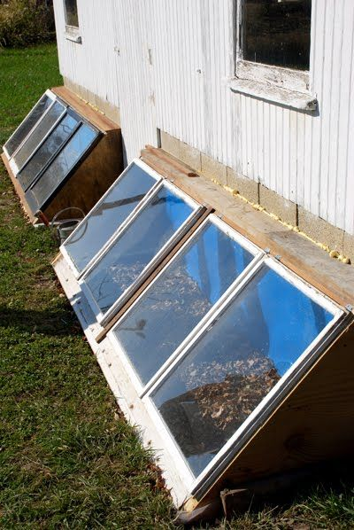 Chicken solarium attached to chicken coop with sand to radiate heat back into the house in winter AND you could raise greens to supplement the girls in the winter!