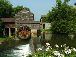 6 Free Things To Do In Pigeon Forge With Kids