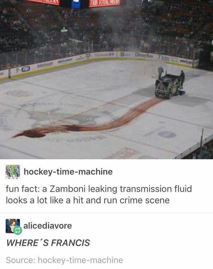 'YOURE GONNA GET KILLED BY A ZAMBONI... IN FIVE MINUTES'