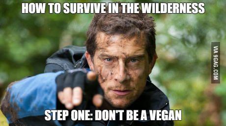 """""""Man vs Wild"""" in a nutshell"""