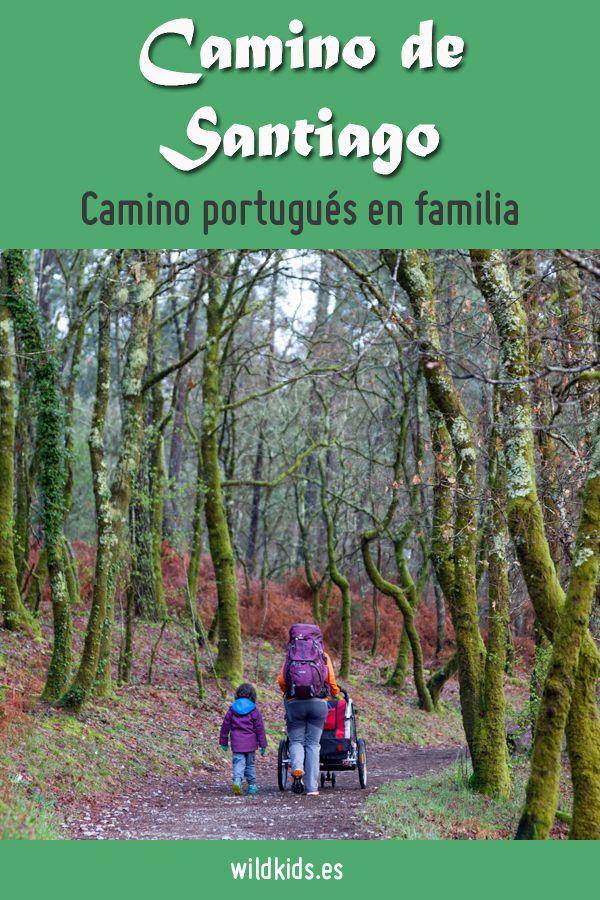Viajes Con Niños Wildkids Camino De Santiago Santiago De Compostela Santiago