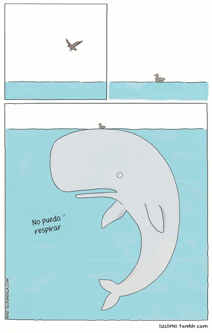 No puedo respirar. #humor #risa #graciosas #chistosas #divertidas