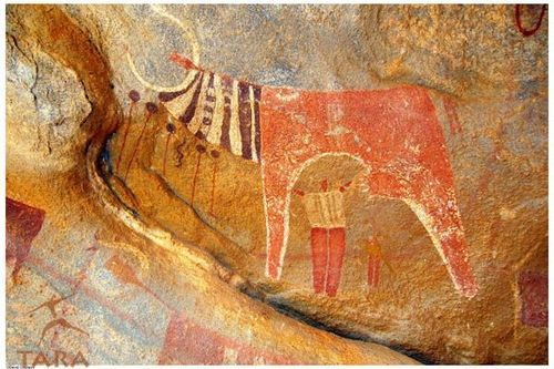 Close ups of cattle and figures, Laas Geel cave complex, Somaliland, Somalia