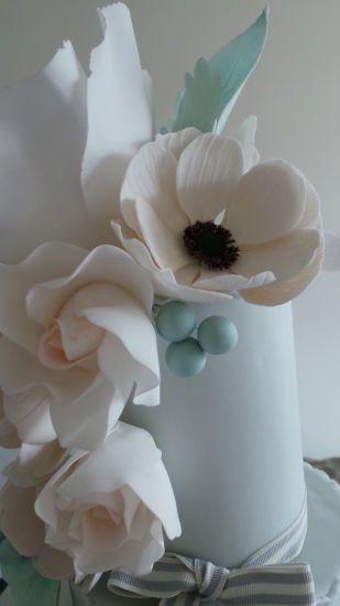Blush anemones ❤️