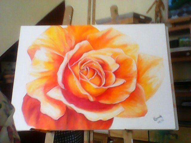 Rosa.  Pintora    CARMELA