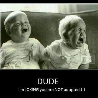 How funny is this?