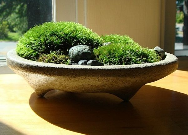 die besten 25 zen garten mini ideen auf pinterest. Black Bedroom Furniture Sets. Home Design Ideas