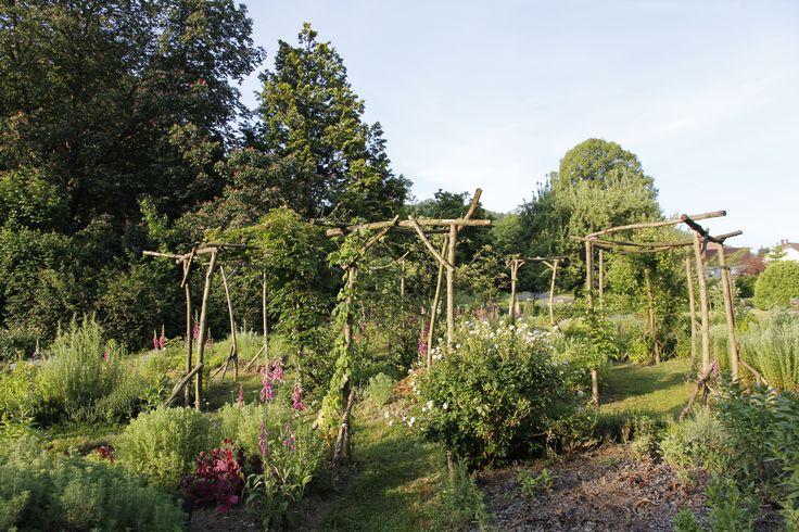 Parc de la villa burrus les jardins jardin aromatique for Jardin aromatique