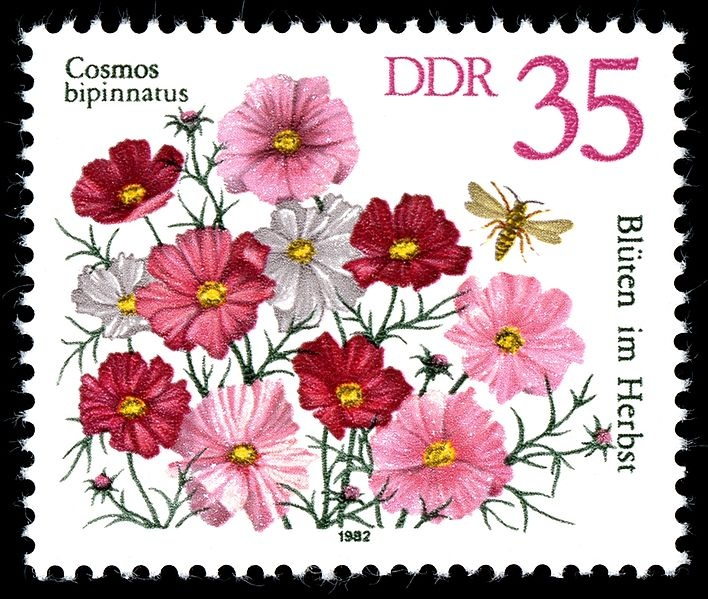 File:Stamps of Germany   Cosmos