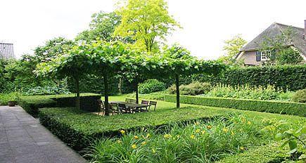http://www.tuindesign-ten-horn.nl Tuinarchitect - tuinontwerp. Moderne strakke grote achtertuin met intiem terras onder dakbomen in Noord-Brabant. Hoogteverschillen en groene tuin.
