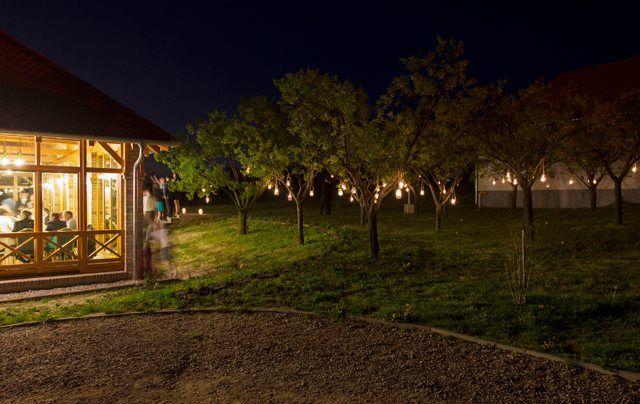 Különleges esküvői helyszín Budapest közelében | Kult Pince