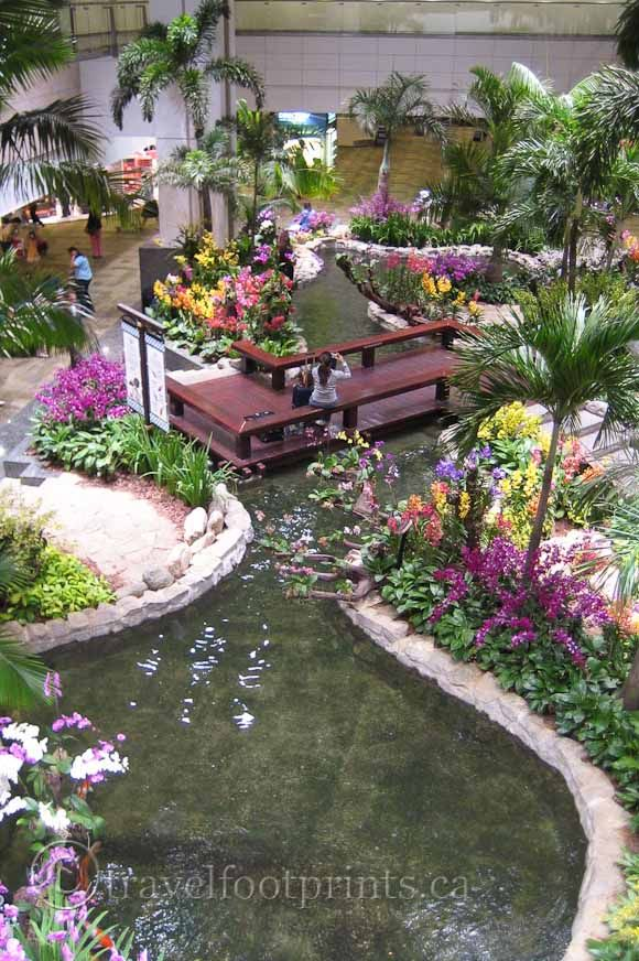 Adding favorite If you have one of those cool backyard ponds, make it even more decorative, relaxing and peaceful with a Floating Flower Garden. Description from flowegarden.com. I searched for this on bing.com/images