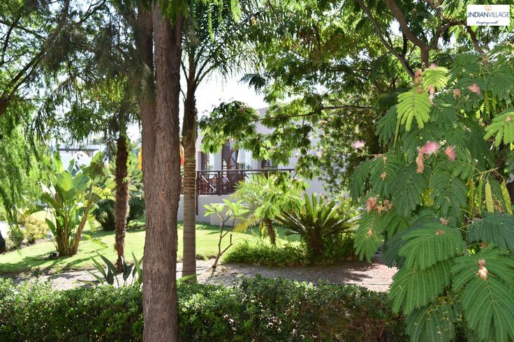 Lush greenery under the Mediterranean sun, incomparable holiday bliss! More at lindianvillage.gr/Hotel_Photo_Gallery/
