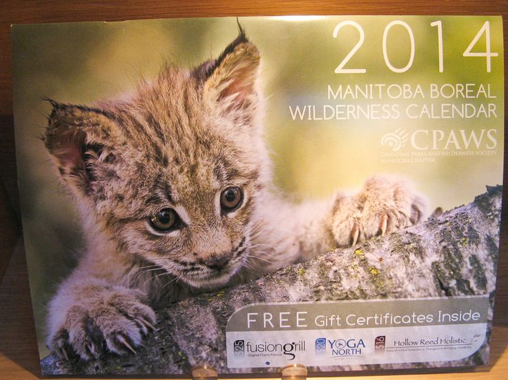 2014 CPAW Calendar.  Fundraising for the group, great deal for you - includes a $25 coupon for Fusion Grill. mmmm.  Available at Best of Friends Gift Shop in the lobby of Winnipeg's Millennium Library. 204-947-0110 mailto:info@friendswpl.ca
