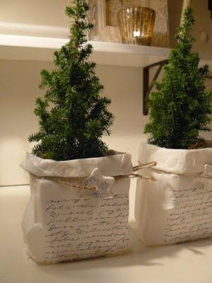 print or write words or something inspiring on paper bag, put little christmas trees (in pots) in