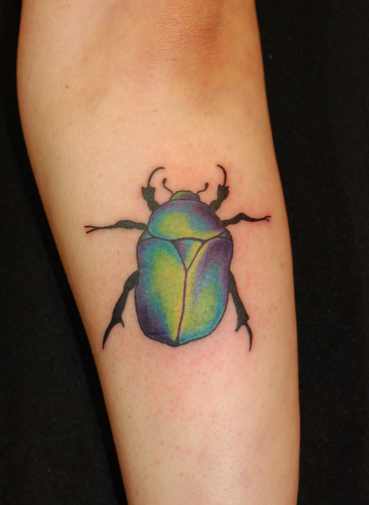 Scarabeo colore