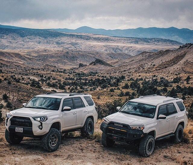 1000+ Ideas About Toyota Paseo On Pinterest