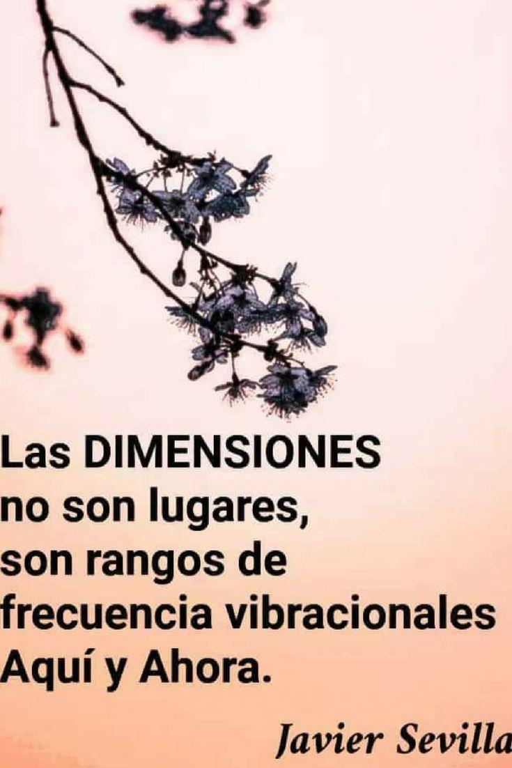 terapias vibracionales#sanacion cuantica#terapias holisticas#quantum healing#la conciencia#la consciencia#fisica cuantica#terapias energeticas #terapias vibracionales