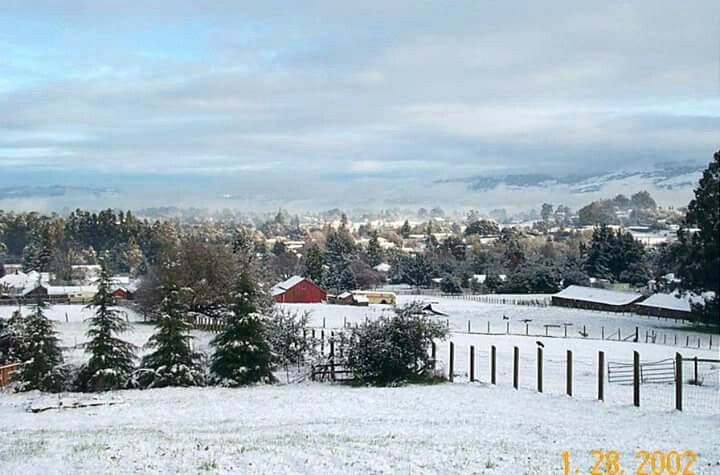 Petaluma, CA  January 28, 2002. Kids had snow day but I made them go anyway. Bet my son remembers...