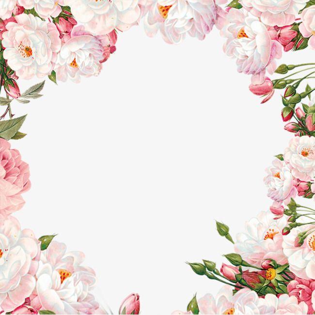 Фото, окантовка на открытку цветы